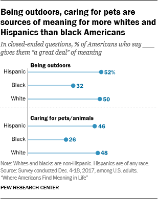 Being outdoors, caring for pets are sources of meaning for more whites and Hispanics than black Americans